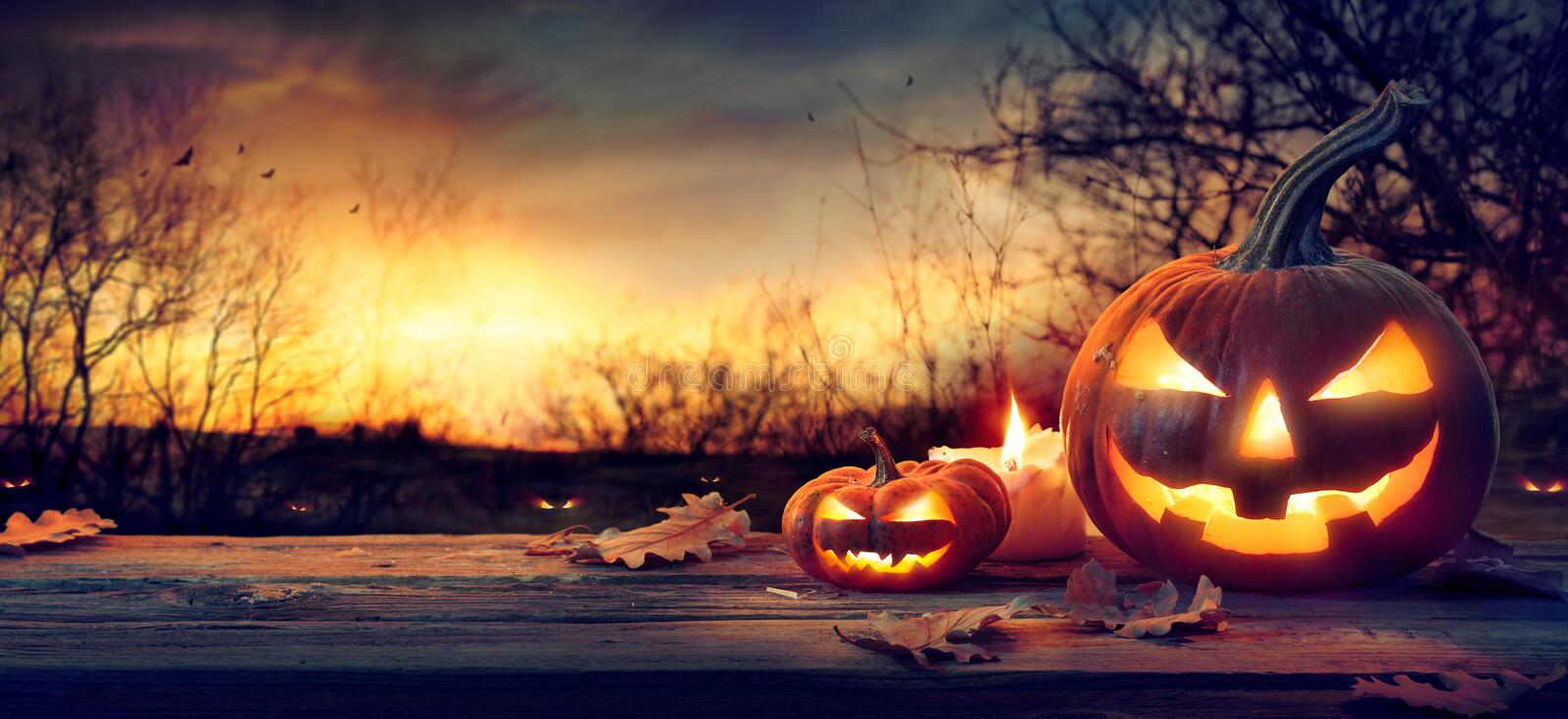 Jack O' Lanterns In Spooky Forest With Ghost Lights royalty free stock photo