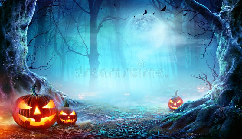 Jack O' Lanterns In Spooky Forest At Moonlight stock images