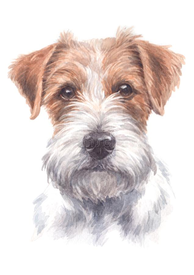 Jack Russell`s water colour painting 025. Jack Russell is a small dog. Both short and furry With intelligence With agility, alertness all the time royalty free illustration
