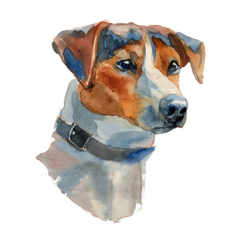 Jack Russell Terrier Dog Portrait stock de ilustración