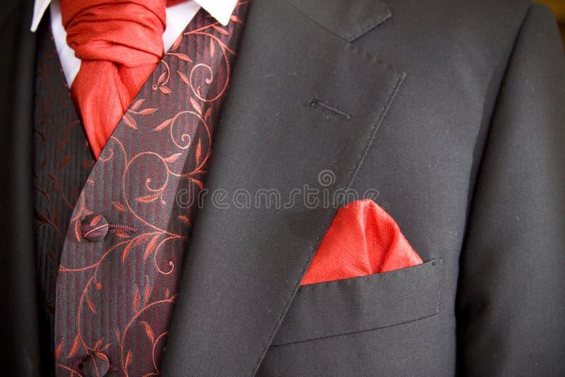 Download Jacket of groom stock photo. Image of tuxedo, cravat - 10242994