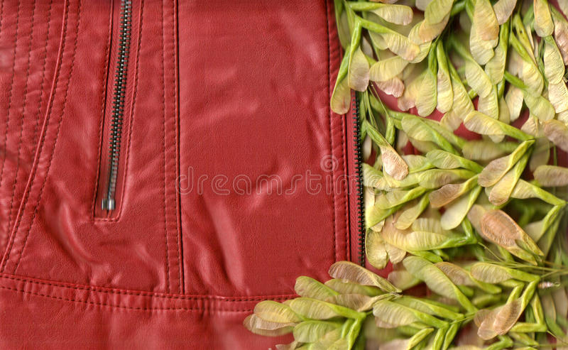 Jacket and plants royalty free stock photo