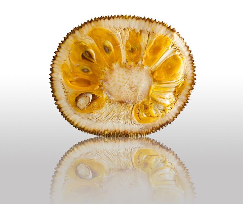 Download Jackfruit stock photo. Image of decorative, fruit, jack - 18173780