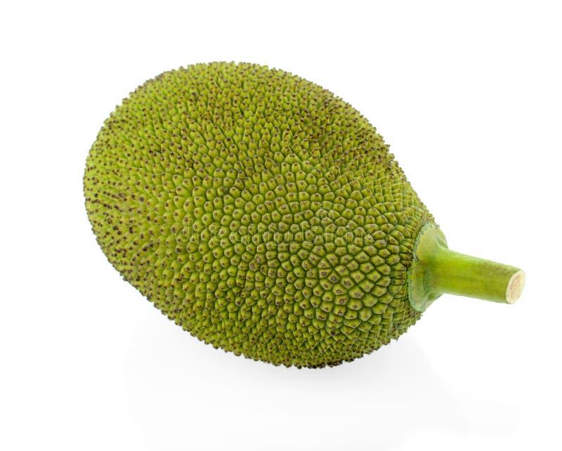 Jackfruit aislado en el fondo blanco imagen de archivo libre de regalías