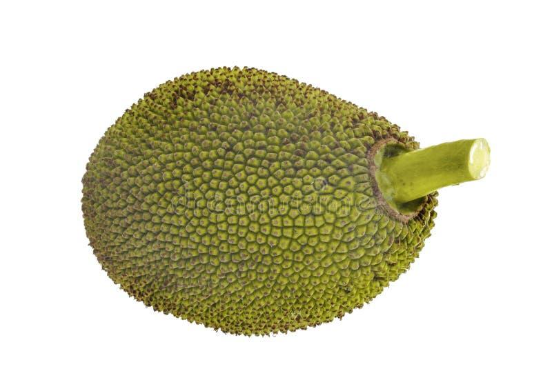 Jackfruit die op witte achtergrond wordt geïsoleerd? stock foto's