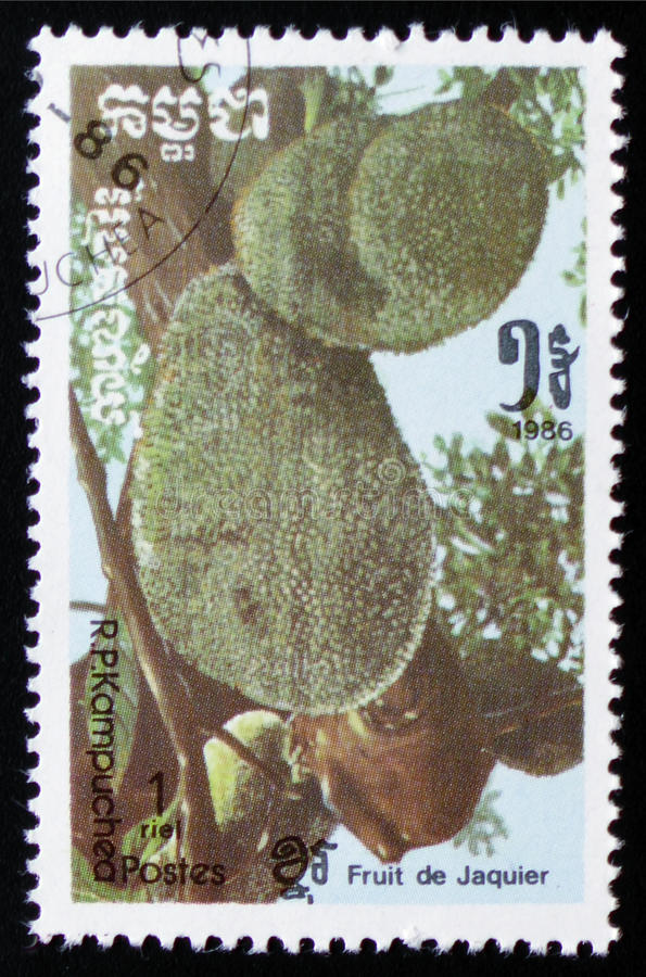 Jackfruit a series of images `Exotic fruits` circa 1986. MOSCOW, RUSSIA - FEBRUARY 19, 2017: A stamp printed in Kampuchea shows Jackfruit a series of images ` stock photo