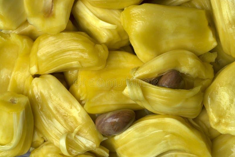 Jackfruits świezi mięsiści ziarna z i bez zewnętrznych plew zdjęcia stock