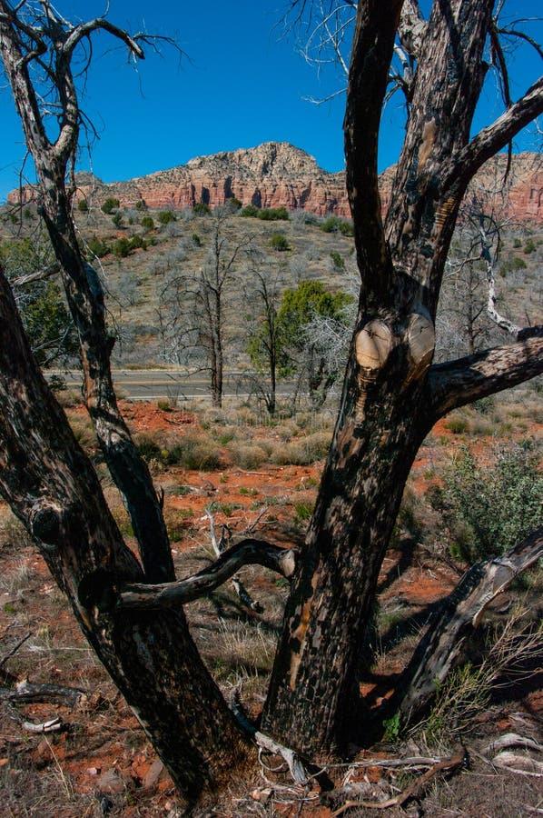 Jacks Canyon Trail No. 55 stock images