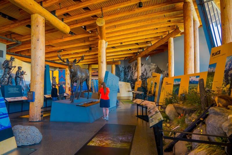 Jackson Hole, Вайоминг США 23-ье мая 2018: Крытый взгляд людей наслаждаясь экспозицией в посетителе открытия Craig Томаса стоковое изображение rf
