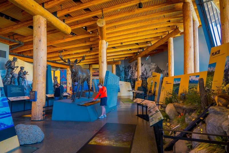 Jackson Hole, Вайоминг США 23-ье мая 2018: Крытый взгляд людей наслаждаясь экспозицией в посетителе открытия Craig Томаса стоковое фото