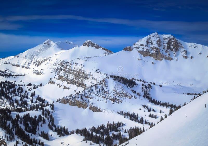 Jackson Hole, Wyoming-Winter stockbilder