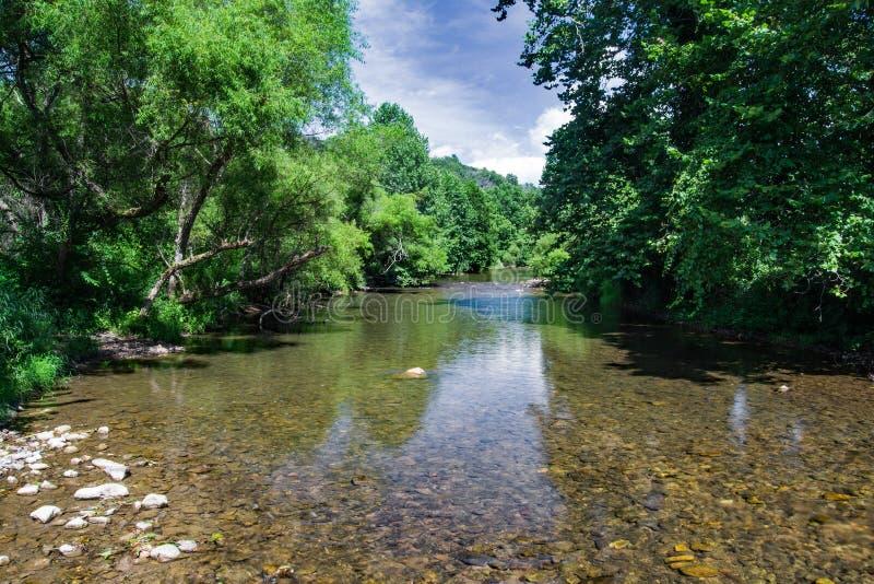 Jackson River, la Virginia, U.S.A. immagini stock libere da diritti