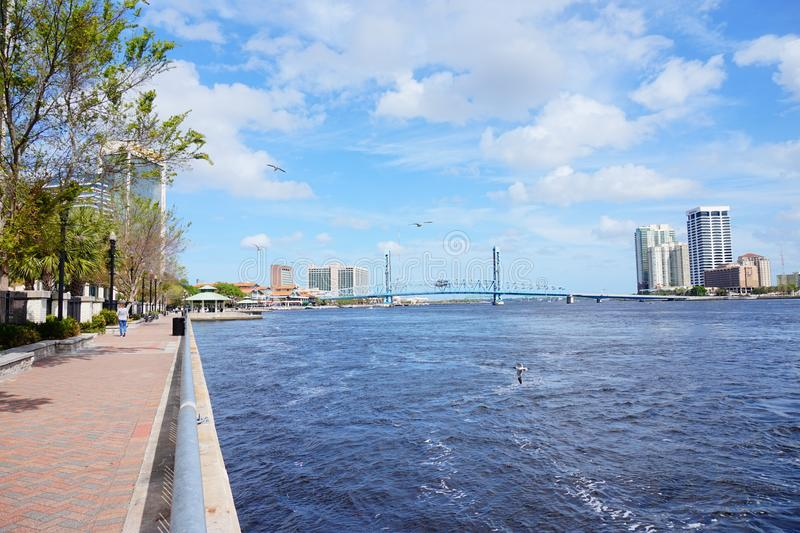 Jacksonville City and st johns river royalty free stock images