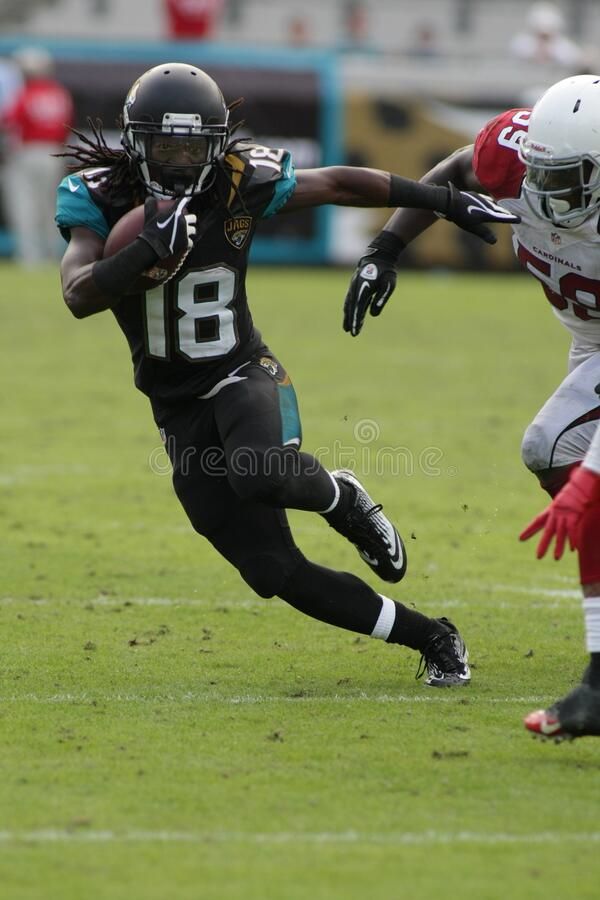 Ace Sanders. Jacksonville Jaguars wide receiver Ace Sanders royalty free stock photo