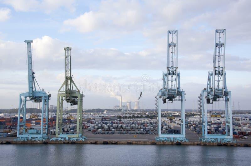 Jacksonville Port Cranes royalty free stock photography
