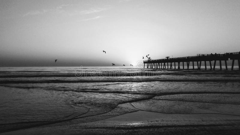Jacksonville strandpir arkivbilder