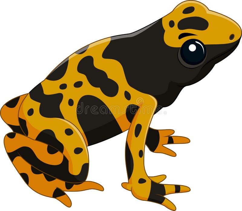 Jad strzałki żaba odizolowywająca na białym tle royalty ilustracja
