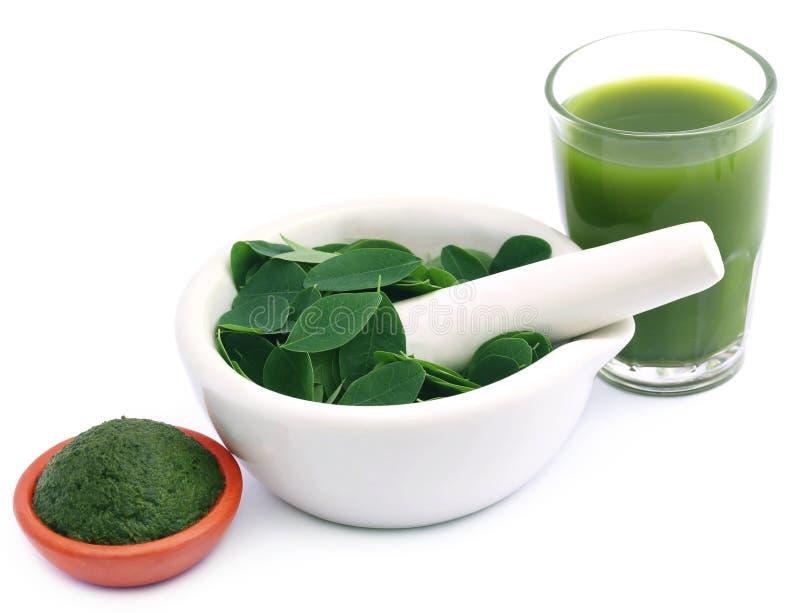 Jadalni Moringa liście z ekstrakta i ziemi pastą zdjęcie stock