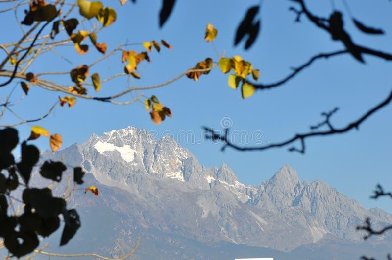 Jade Dragon Snow Mountain i vinter royaltyfri foto