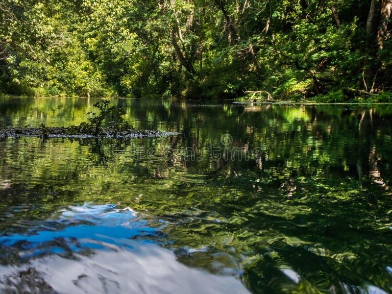 Jade Reflections Upon ein Frühling-FED-Strom lizenzfreie stockbilder