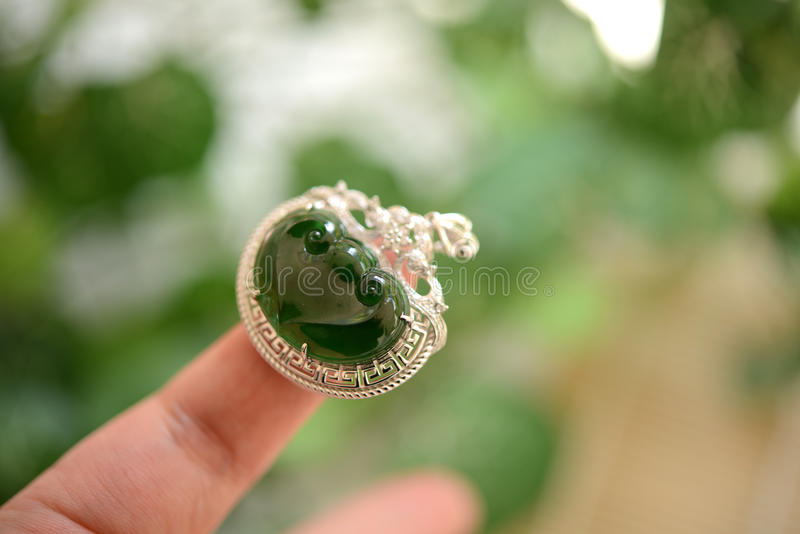 Jadehänge arkivbilder