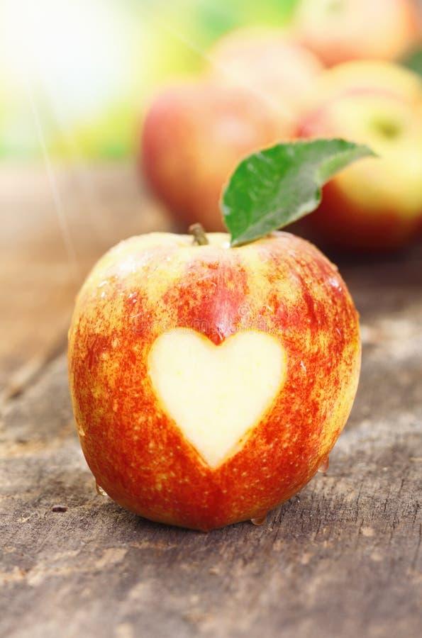 Jag älskar äpplen royaltyfria bilder