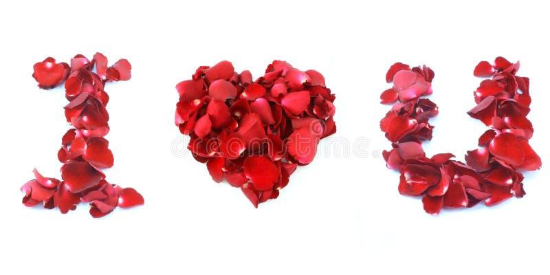 Jag älskar dig gjorde vid den isolerade röda rosen på vit bakgrund arkivbild