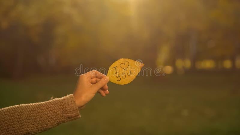Jag älskar dig som är skriftlig på höstbladet, handen som rymmer handstilar, romantisk bikt arkivbilder