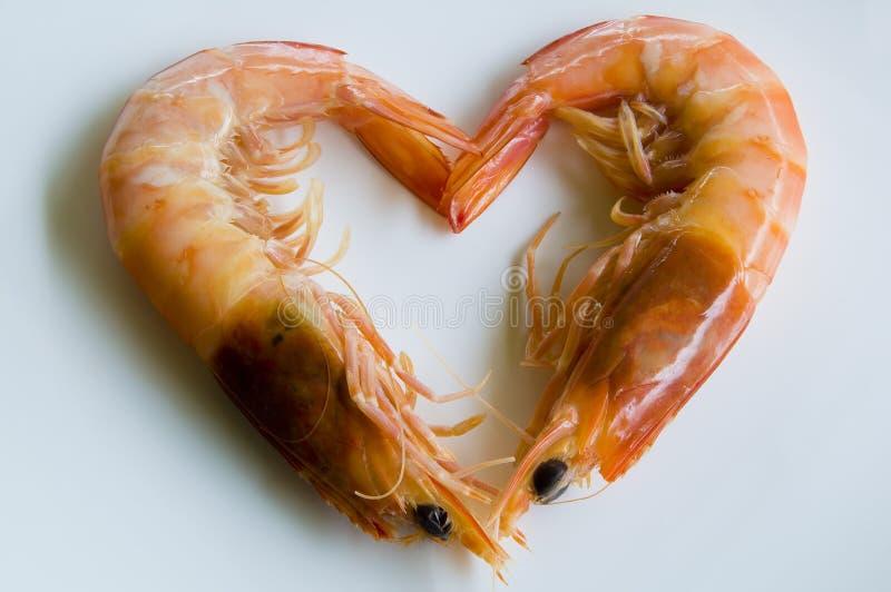 jag älskar skaldjur arkivfoto