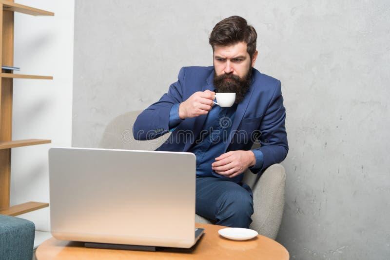 Jag dricker ton av kaffe Allvarlig affärsman som arbetar på bärbara datorn med koppen av den varma drinken Skäggigt tycka om för  royaltyfri fotografi