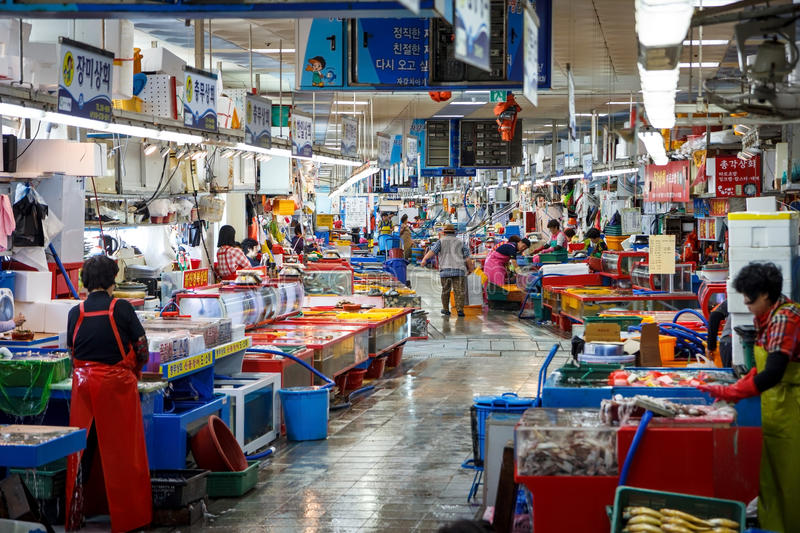 Jagalchi Indoor Fish Market, Busan, Korea. Image of Jagalchi Indoor Fish Market in Busan, Korea stock photography
