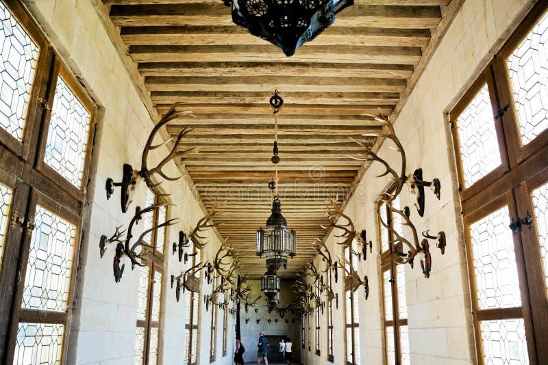 Jagdgalerie herein in Chateau de Chambord stockfotografie