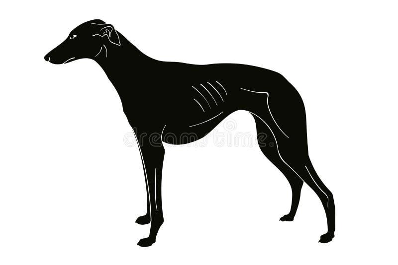 Jagdhund züchtet Hund lizenzfreie abbildung
