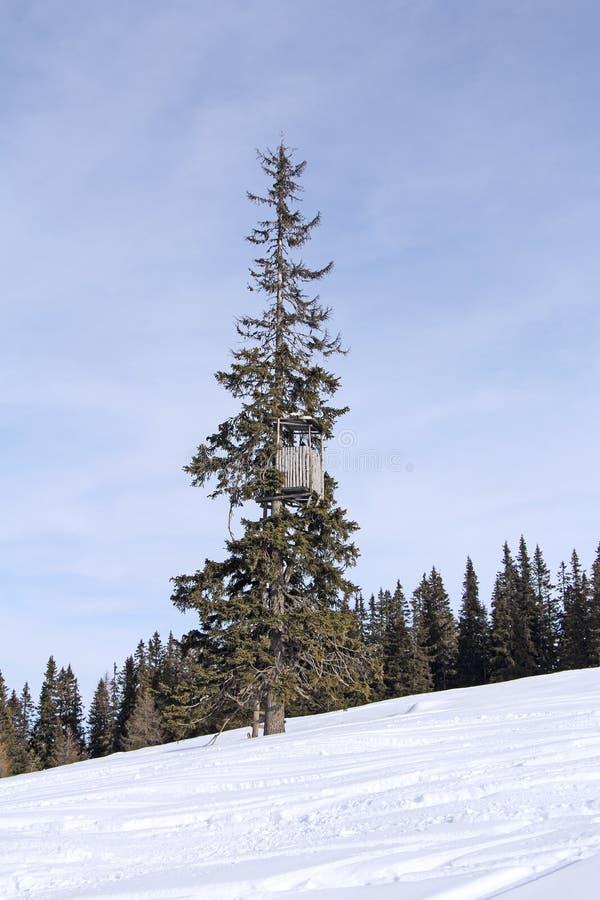Jagdturm lizenzfreie stockfotografie