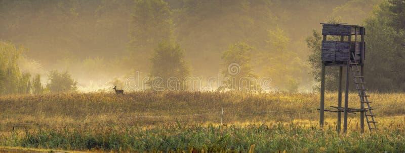 Jagdturm in den Nebeln des Tales morgens lizenzfreies stockfoto