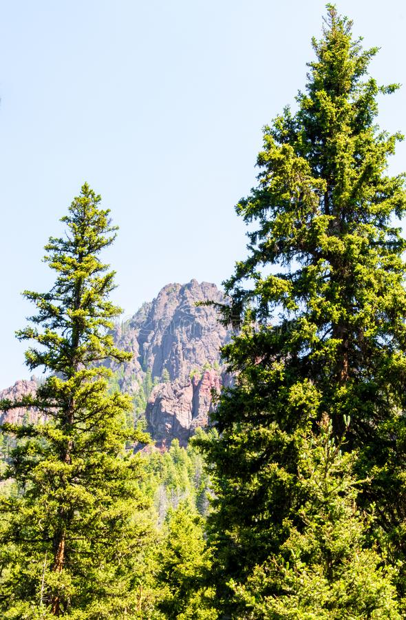 Jagged Montana mountain peak framed by lush trees. Jagged mountain peak in Hyalite Canyon near Bozeman, Montana framed by lush green trees under blue skies stock photos