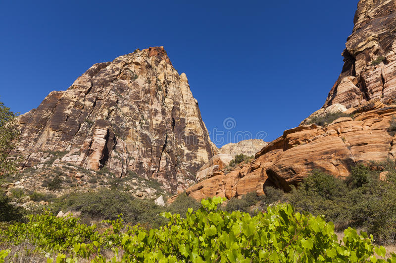 Jagged mountains jut out of the desert near Las Vegas. royalty free stock photography