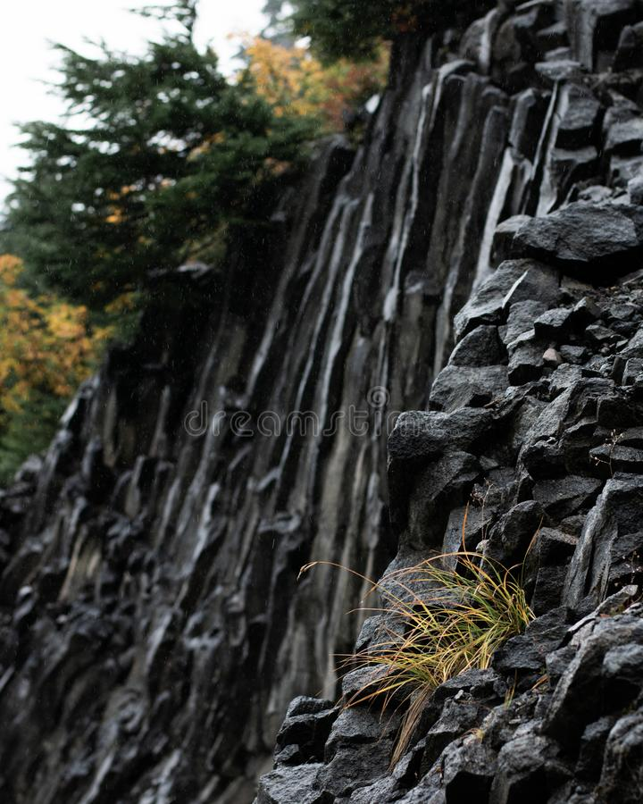 Jagged Rock Face on the Mountain. Little bush too royalty free stock images