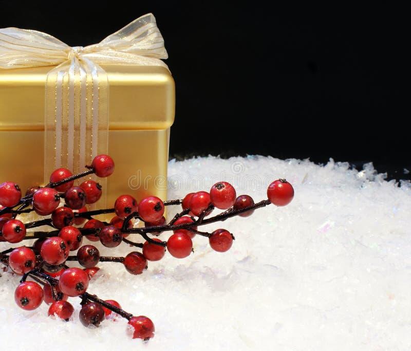jagod bożych narodzeń prezent zdjęcia stock