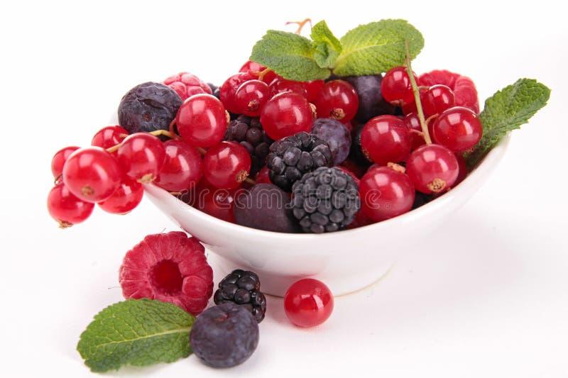 Download Jagod owoc zdjęcie stock. Obraz złożonej z biały, truskawka - 28958076