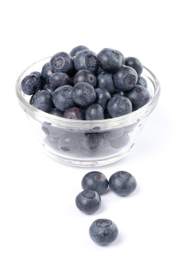 jagodowe zdjęcia stock
