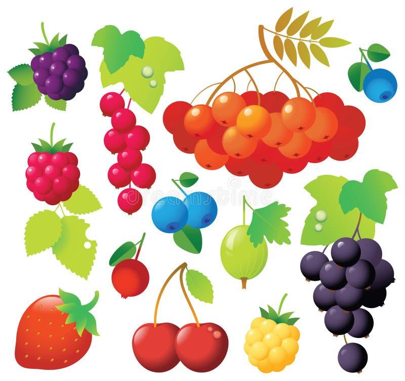 jagodowe ikony ilustracji