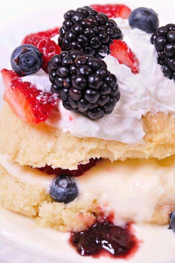 jagodowy shortcake obrazy royalty free