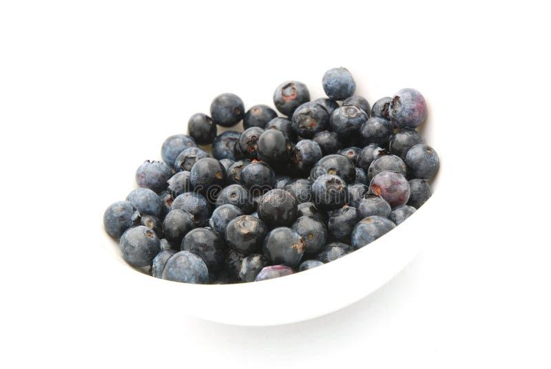 jagody błękitny obrazy stock