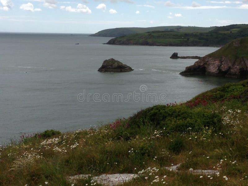 Jagody głowa, Brixham, Devon zdjęcie royalty free