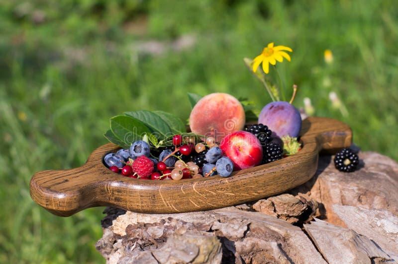 Jagody i owoc na drewnianym talerzu wie? zdjęcia royalty free