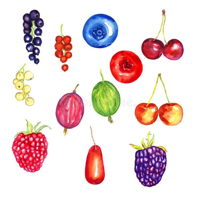 Jagody kolekcje, rodzynki, czarna jagoda, cranberry, agrest, malinka, lingonberry, czernica, dereń ilustracji