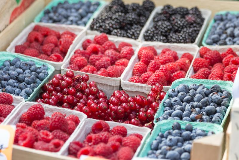 Jagody, malinki, czarne jagody: Jagoda kolory w pudełkach i, na sprzedaży zdjęcia stock