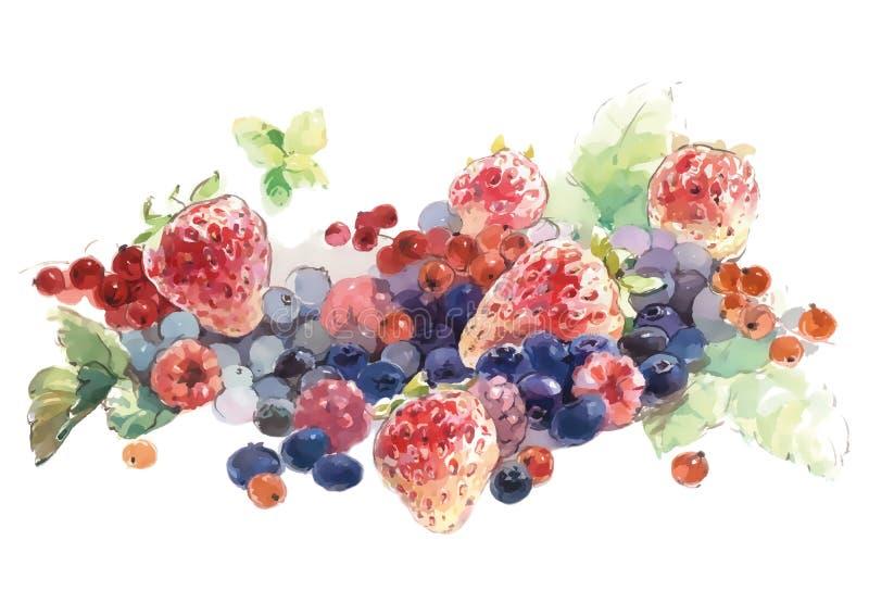 Jagody na stołowym (truskawki, malinki, czarne jagody, rodzynki,) ilustracja wektor