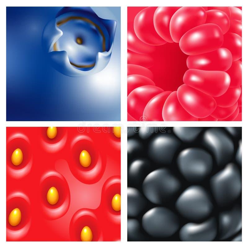 jagody Zakończenie Malinki, czarne jagody, czernicy, truskawki tła jagodowy buckthorn zakończenia morze jagodowy royalty ilustracja